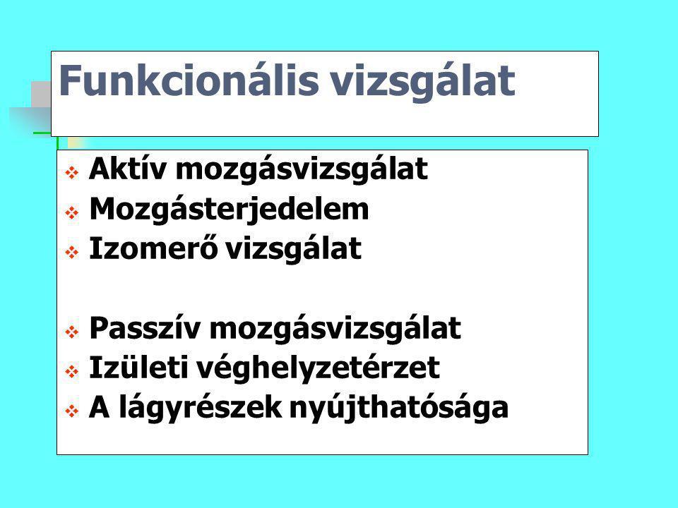 Funkcionális vizsgálat  Aktív mozgásvizsgálat  Mozgásterjedelem  Izomerő vizsgálat  Passzív mozgásvizsgálat  Izületi véghelyzetérzet  A lágyrész