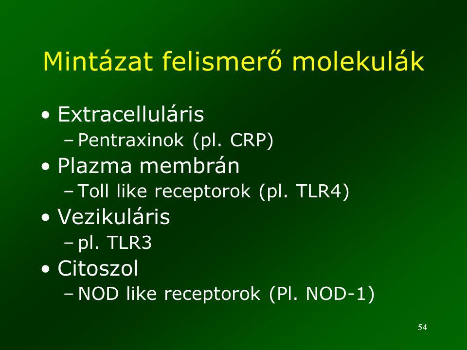 54 Mintázat felismerő molekulák Extracelluláris –Pentraxinok (pl. CRP) Plazma membrán –Toll like receptorok (pl. TLR4) Vezikuláris –pl. TLR3 Citoszol