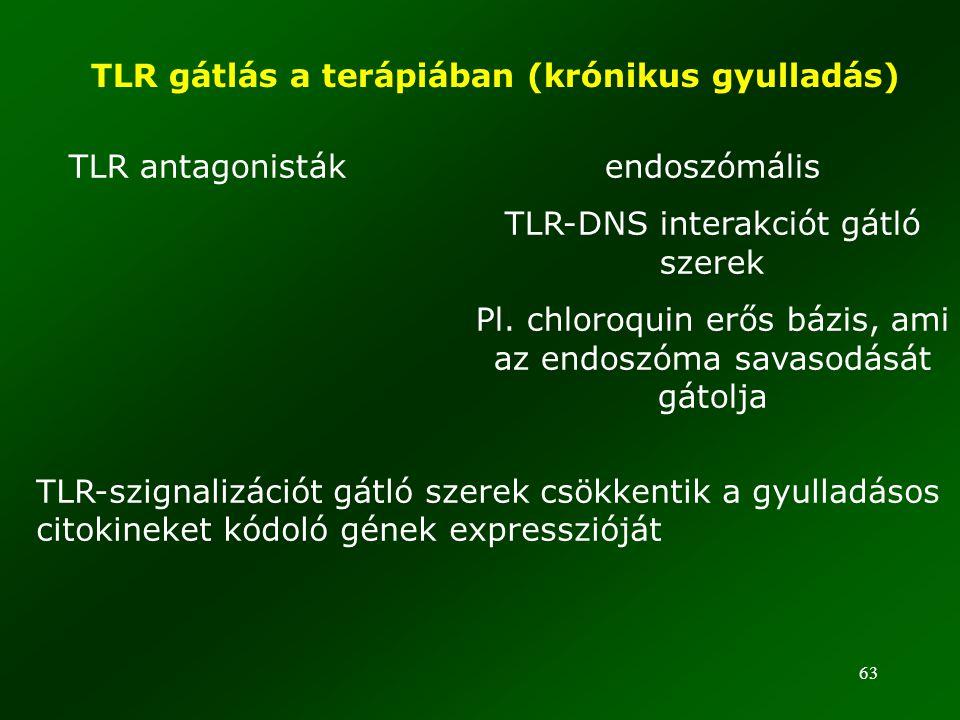 63 TLR gátlás a terápiában (krónikus gyulladás) TLR antagonisták endoszómális TLR-DNS interakciót gátló szerek Pl. chloroquin erős bázis, ami az endos