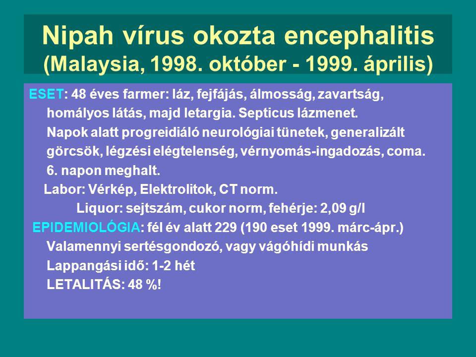 Nagy halálozású, újabban felismert infekciós betegségek Ebola vírus (1977)Ebola haemorrhagiás láz Guanarito vírus(1991)Venezuellai haemorrh. láz Sabia