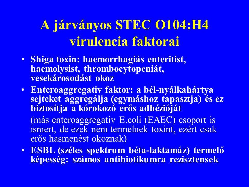 Új jellegzetességek (e ltérés a korábban ismert E. coli O157:H7 okozta HUS-tól) Kórokozó: Shiga toxint termelő Escherichia coli (STEC) O104:H4 HUS mag