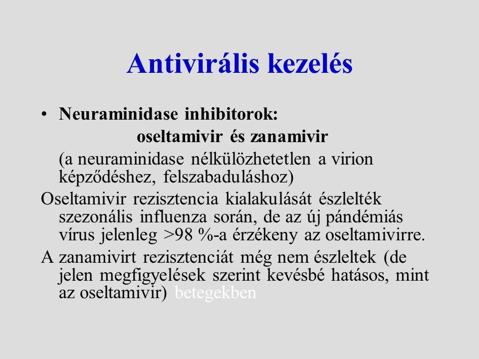 Terápiás ajánlás kockázati csoportokban (ECDC Guideline 2009. augusztus) A pandémiás influenza az esetek egy részében rendkívül gyors progressziójú, a