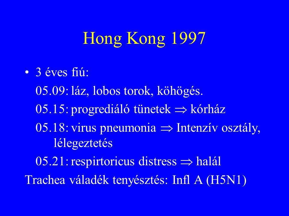 Madárinfluenza: emberi megbetegedések