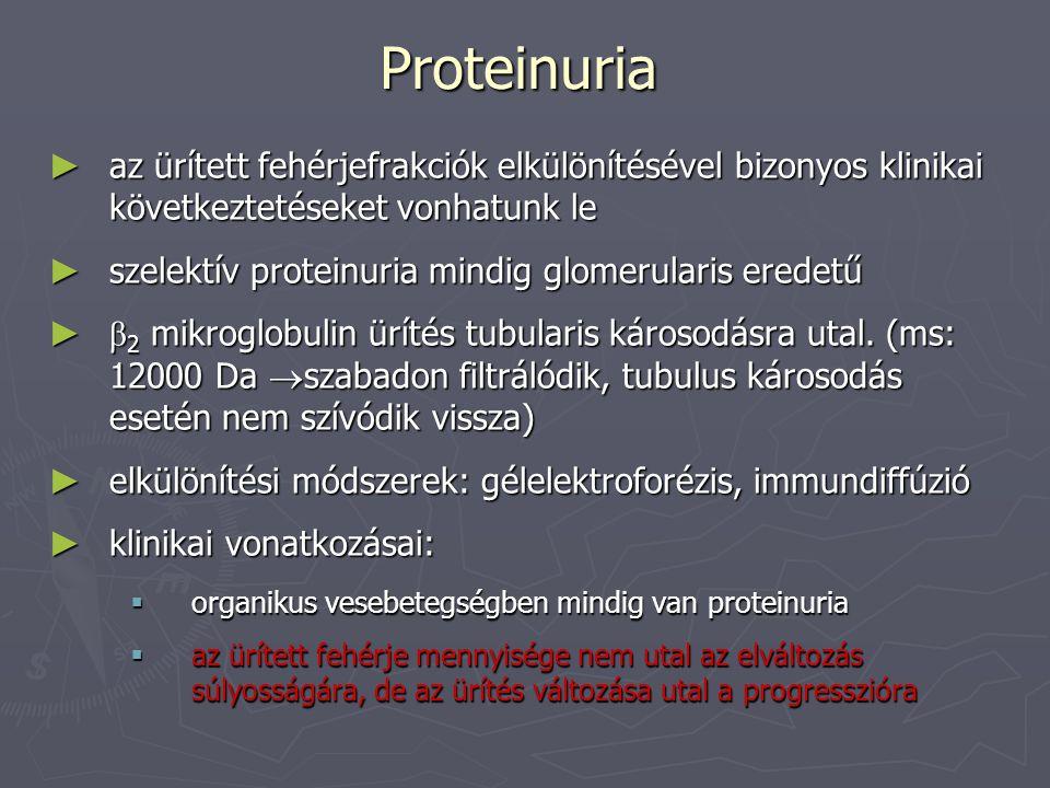 Proteinuria ► az ürített fehérjefrakciók elkülönítésével bizonyos klinikai következtetéseket vonhatunk le ► szelektív proteinuria mindig glomerularis