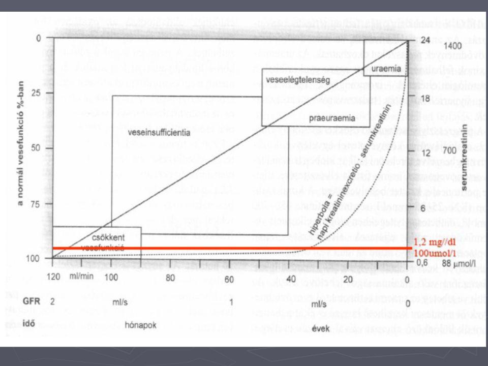 A vese működésének vizsgálata ► egyéb clearance vizsgálatok  ozmotikus clearance: C osm =U osm x V/P osm ahol C osm =U osm x V/P osm ahol U osm =vizelet ozmolalitás V=percdiurézis (ml/min) P osm =plazma ozmolalitás  szabadvíz clearance: C H2o =V-(U osm x V/P) osm ahol C H2o =V-(U osm x V/P) osm ahol U osm =vizelet ozmolalitás V=percdiurézis (ml/min) P osm =plazma ozmolalitás ► a vese koncentálóképességének érzékeny mutatója ► 20 - -5-7 ml/perc  atípusos clearance módszerek: ► hasonló elven működnek  ha a vizsgált anyag extrakciója 1  RPF  ha csak glomerulárisan filtrálódik  GFR