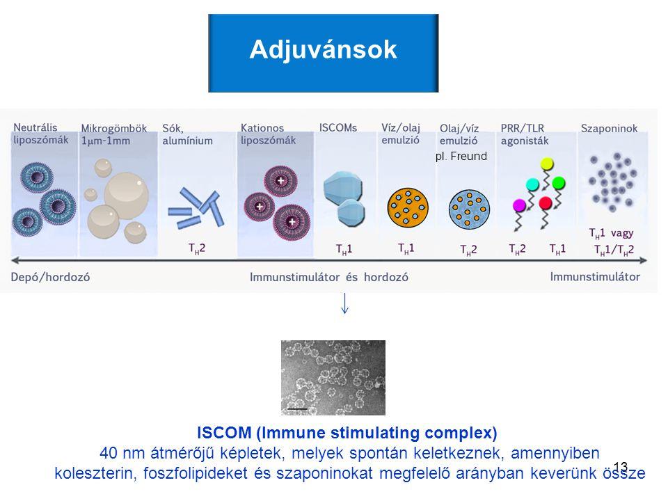 13 ISCOM (Immune stimulating complex) 40 nm átmérőjű képletek, melyek spontán keletkeznek, amennyiben koleszterin, foszfolipideket és szaponinokat megfelelő arányban keverünk össze Adjuvánsok pl.