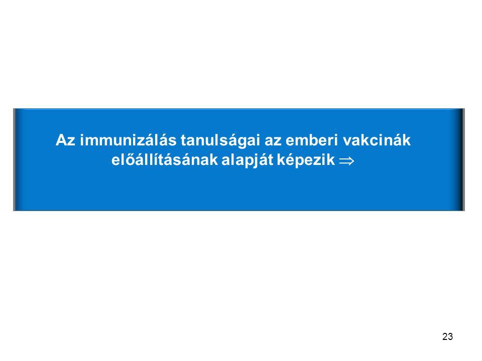 23 Van-e jelentősége az antigén dózisának az immunizálás során.