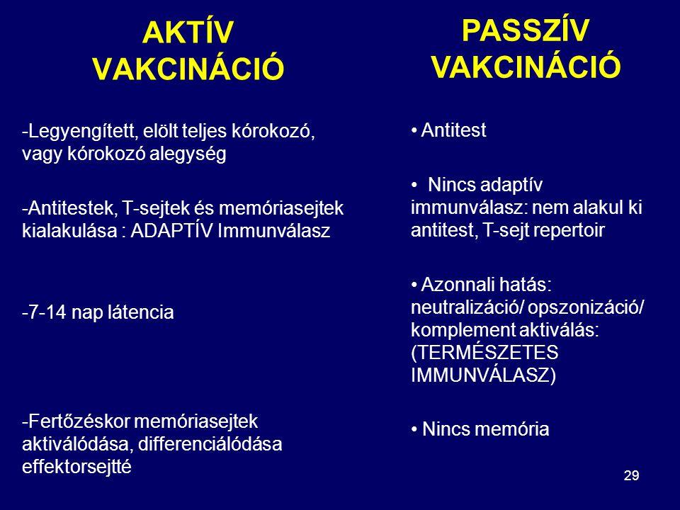 29 AKTÍV VAKCINÁCIÓ -Legyengített, elölt teljes kórokozó, vagy kórokozó alegység -Antitestek, T-sejtek és memóriasejtek kialakulása : ADAPTÍV Immunválasz -7-14 nap látencia -Fertőzéskor memóriasejtek aktiválódása, differenciálódása effektorsejtté Antitest Nincs adaptív immunválasz: nem alakul ki antitest, T-sejt repertoir Azonnali hatás: neutralizáció/ opszonizáció/ komplement aktiválás: (TERMÉSZETES IMMUNVÁLASZ) Nincs memória PASSZÍV VAKCINÁCIÓ