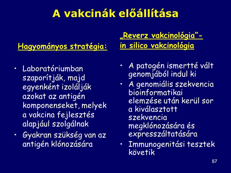 58 1.lépés: T sejt epitópok meghatározása: Pl.