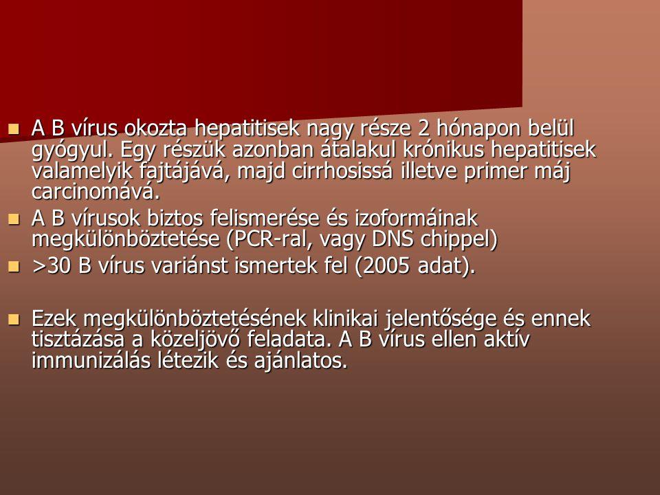 A B vírus okozta hepatitisek nagy része 2 hónapon belül gyógyul. Egy részük azonban átalakul krónikus hepatitisek valamelyik fajtájává, majd cirrhosis