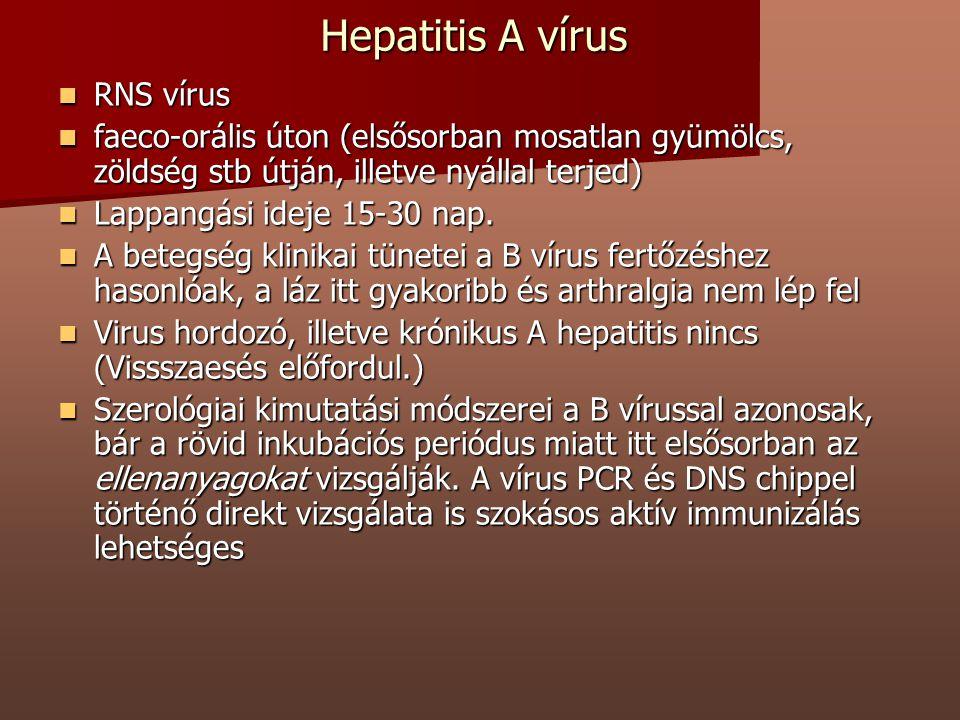 Hepatitis A vírus RNS vírus RNS vírus faeco-orális úton (elsősorban mosatlan gyümölcs, zöldség stb útján, illetve nyállal terjed) faeco-orális úton (e