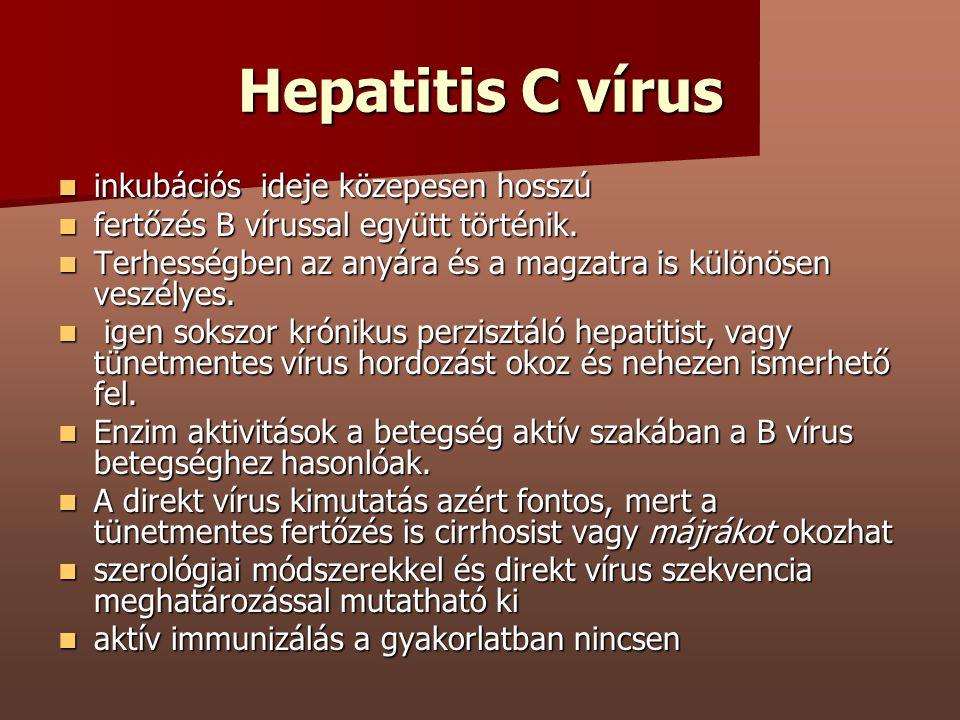 Hepatitis C vírus inkubációs ideje közepesen hosszú inkubációs ideje közepesen hosszú fertőzés B vírussal együtt történik. fertőzés B vírussal együtt