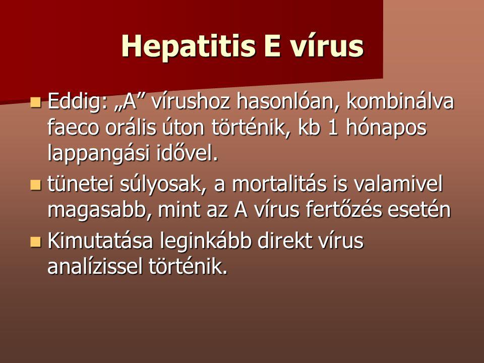 """Hepatitis E vírus Eddig: """"A"""" vírushoz hasonlóan, kombinálva faeco orális úton történik, kb 1 hónapos lappangási idővel. Eddig: """"A"""" vírushoz hasonlóan,"""