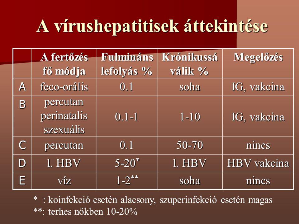 A vírushepatitisek áttekintése A fertőzés fő módja Fulmináns lefolyás % Krónikussá válik % Megelőzés Afeco-orális0.1soha IG, vakcina Bpercutanperinata