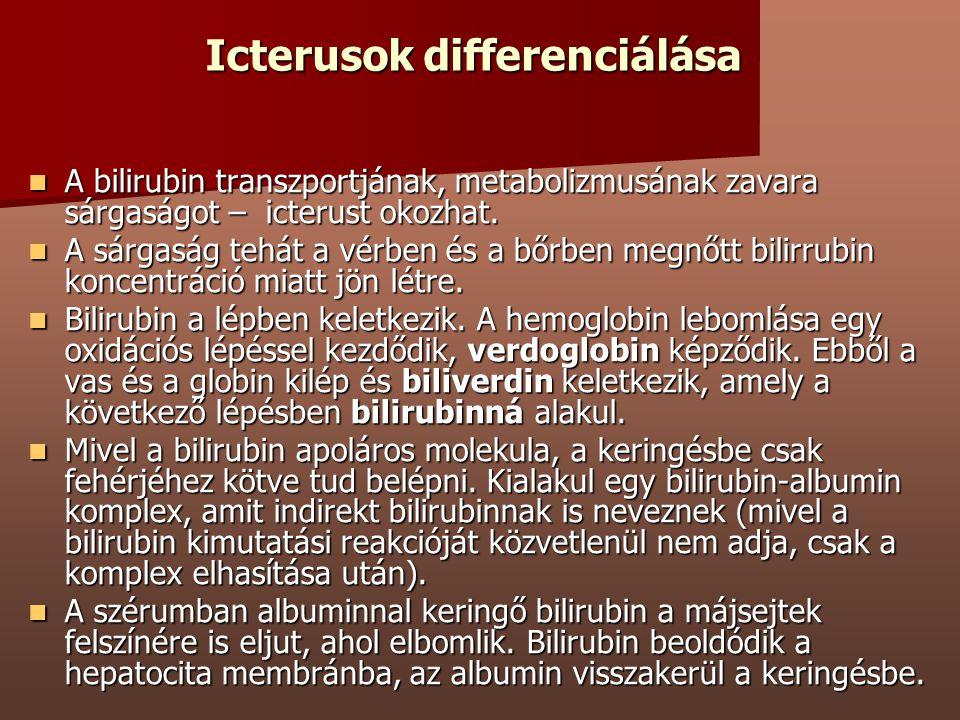 Icterusok differenciálása A bilirubin transzportjának, metabolizmusának zavara sárgaságot – icterust okozhat. A bilirubin transzportjának, metabolizmu