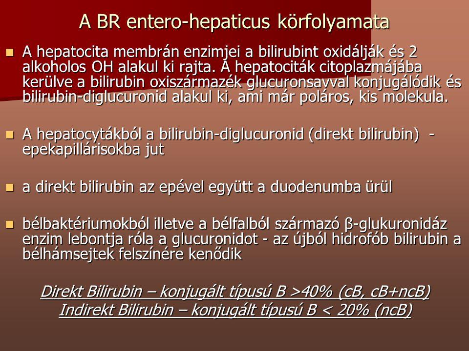 A BR entero-hepaticus körfolyamata A hepatocita membrán enzimjei a bilirubint oxidálják és 2 alkoholos OH alakul ki rajta. A hepatociták citoplazmájáb