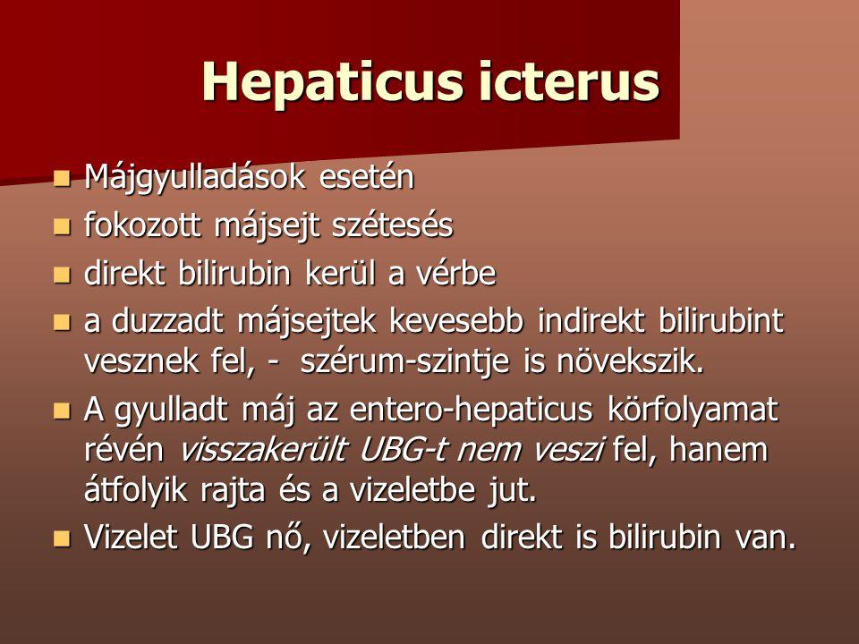 Hepaticus icterus Májgyulladások esetén Májgyulladások esetén fokozott májsejt szétesés fokozott májsejt szétesés direkt bilirubin kerül a vérbe direk