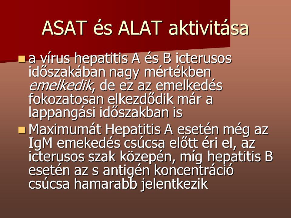 ASAT és ALAT aktivitása a vírus hepatitis A és B icterusos időszakában nagy mértékben emelkedik, de ez az emelkedés fokozatosan elkezdődik már a lappa