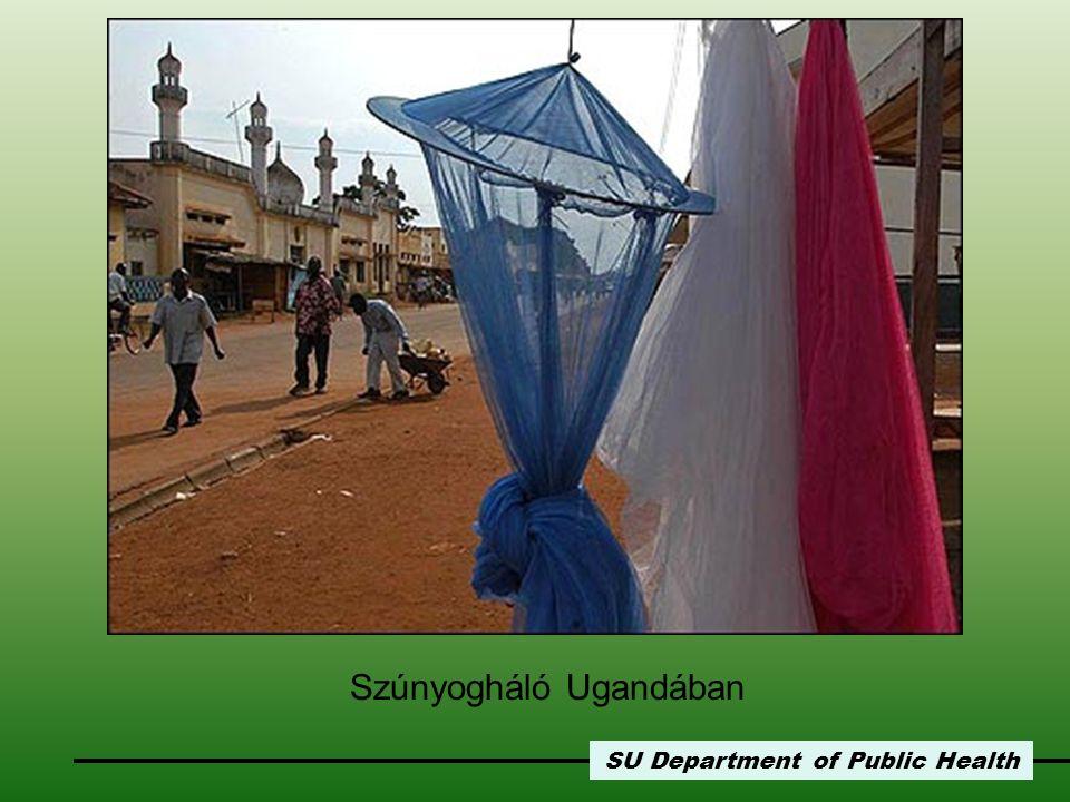 SU Department of Public Health Szúnyogháló Ugandában