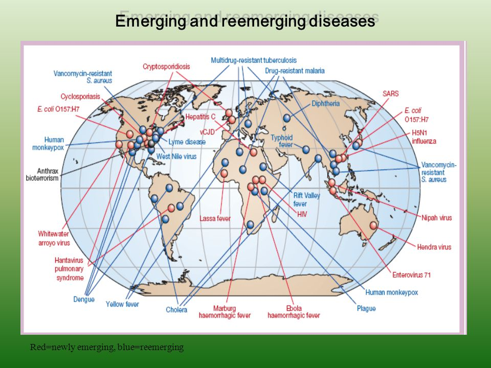 Red=newly emerging, blue=reemerging Emerging and reemerging diseases