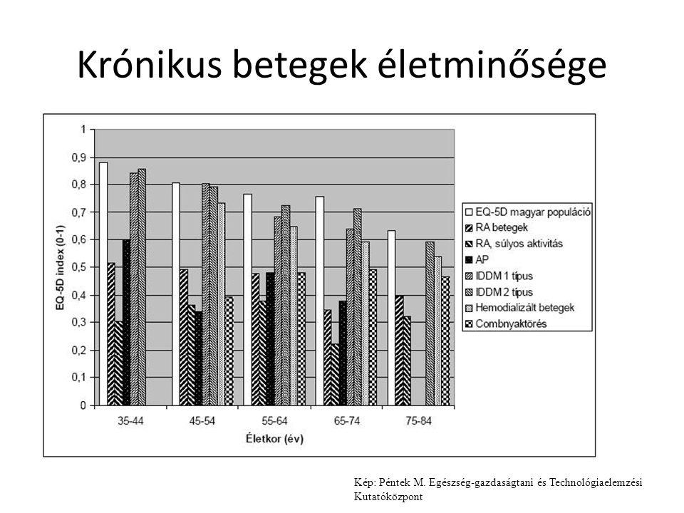 Krónikus betegek életminősége Kép: Péntek M. Egészség-gazdaságtani és Technológiaelemzési Kutatóközpont