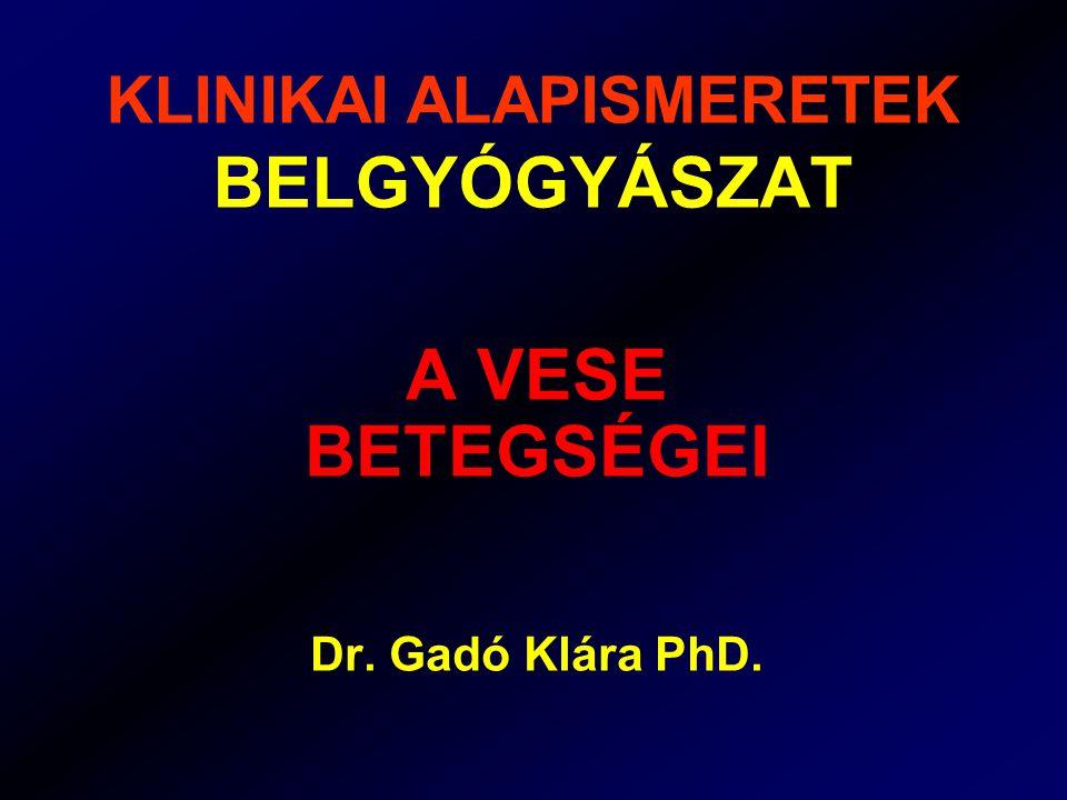 KLINIKAI ALAPISMERETEK BELGYÓGYÁSZAT A VESE BETEGSÉGEI Dr. Gadó Klára PhD.