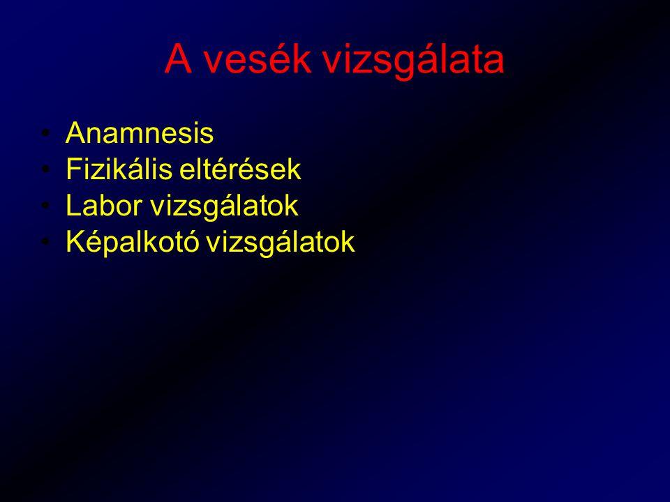 A vesék vizsgálata Anamnesis Fizikális eltérések Labor vizsgálatok Képalkotó vizsgálatok