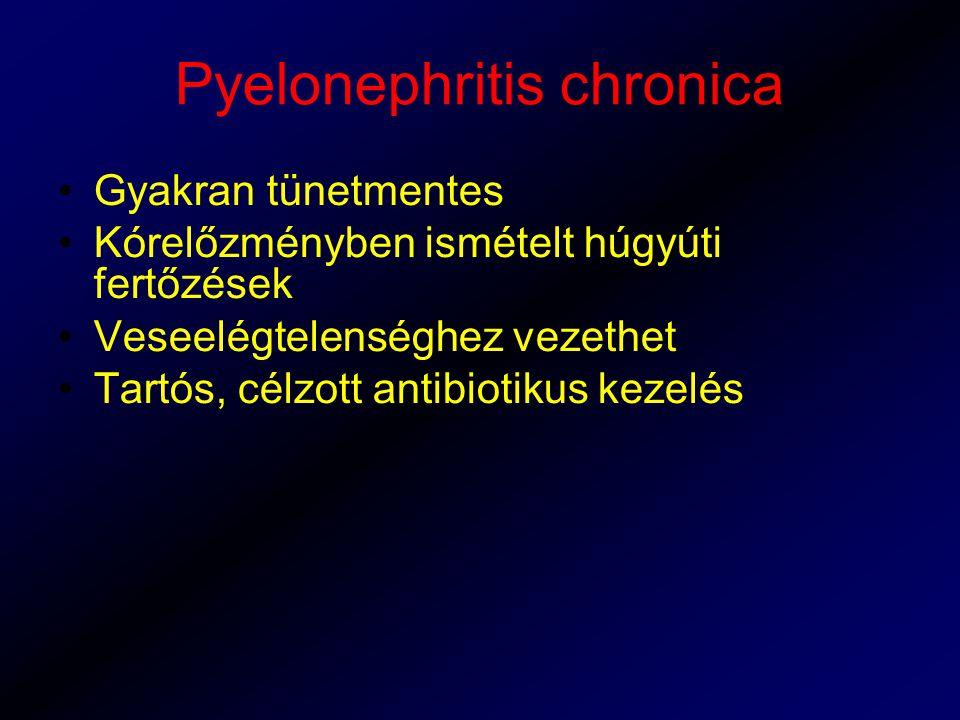 Pyelonephritis chronica Gyakran tünetmentes Kórelőzményben ismételt húgyúti fertőzések Veseelégtelenséghez vezethet Tartós, célzott antibiotikus kezel