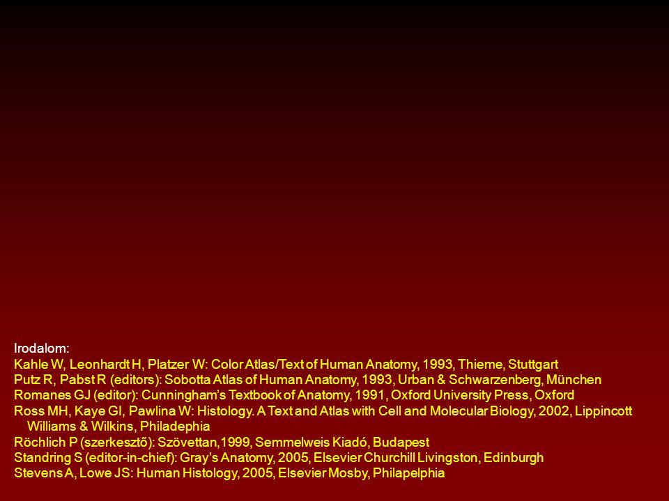 Irodalom: Kahle W, Leonhardt H, Platzer W: Color Atlas/Text of Human Anatomy, 1993, Thieme, Stuttgart Putz R, Pabst R (editors): Sobotta Atlas of Huma