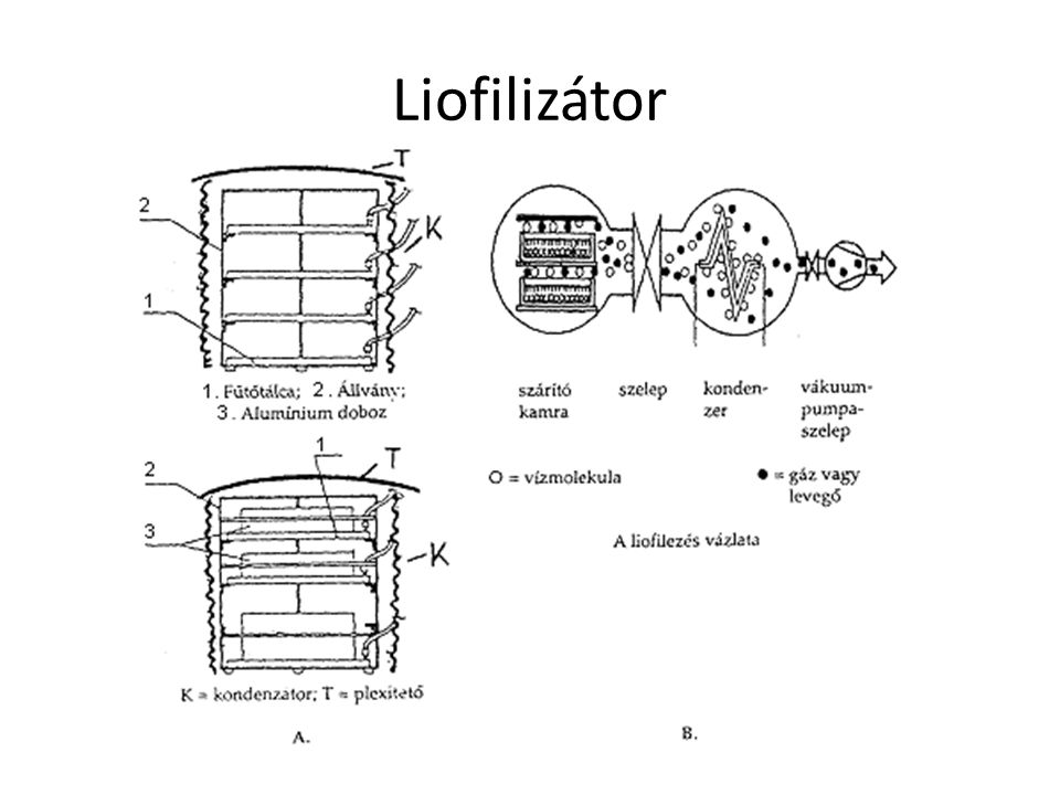 Liofilizálási kettősdiagram