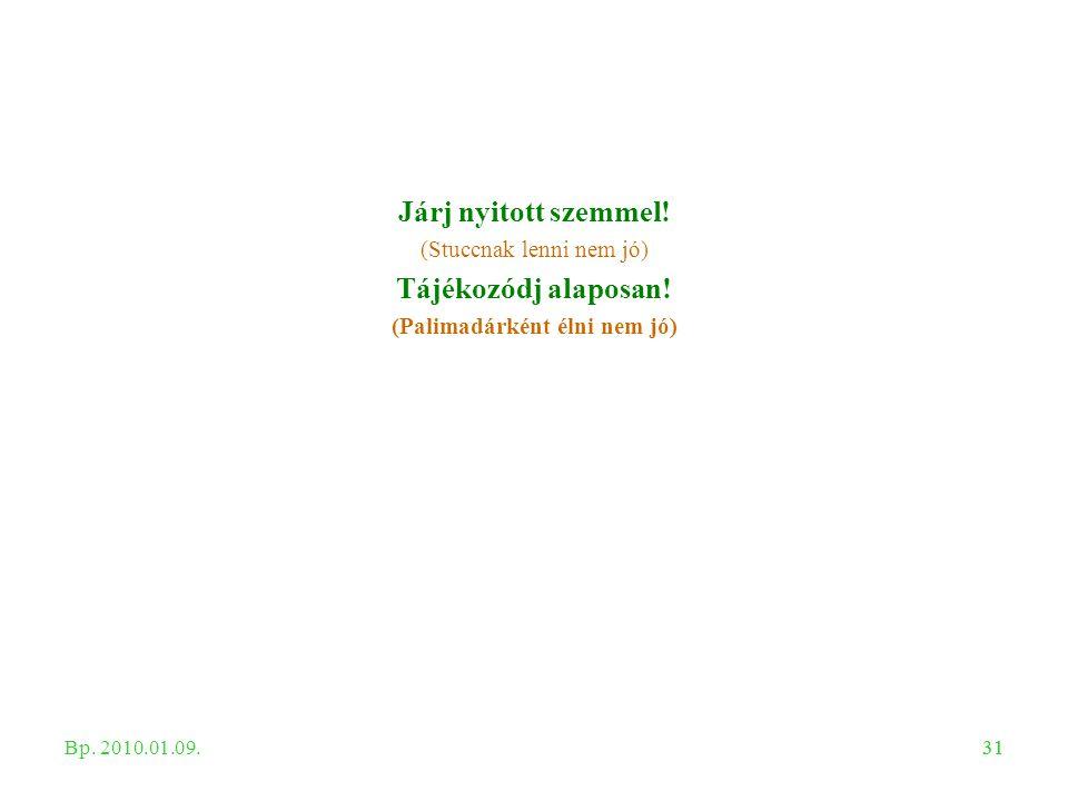 31 Járj nyitott szemmel! (Stuccnak lenni nem jó) Tájékozódj alaposan! (Palimadárként élni nem jó) Bp. 2010.01.09.