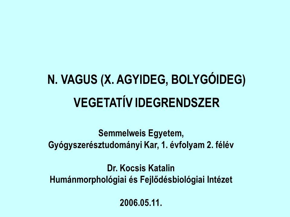 N. VAGUS (X. AGYIDEG, BOLYGÓIDEG) VEGETATÍV IDEGRENDSZER Semmelweis Egyetem, Gyógyszerésztudományi Kar, 1. évfolyam 2. félév Dr. Kocsis Katalin Humánm