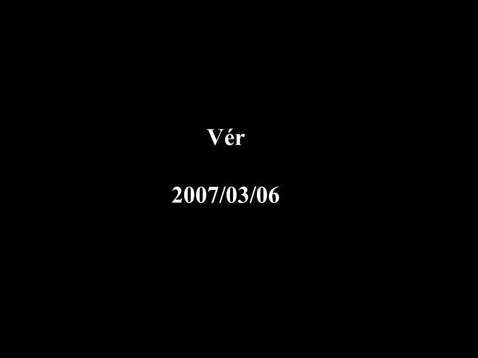 Vér 2007/03/06