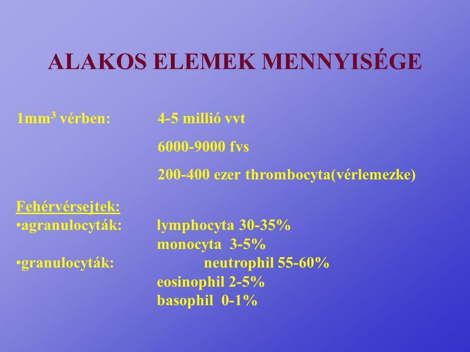 ALAKOS ELEMEK MENNYISÉGE 1mm 3 vérben:4-5 millió vvt 6000-9000 fvs 200-400 ezer thrombocyta(vérlemezke) Fehérvérsejtek: agranulocyták:lymphocyta 30-35% monocyta 3-5% granulocyták:neutrophil 55-60% eosinophil 2-5% basophil 0-1%