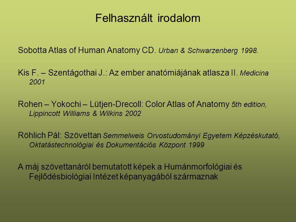 Felhasznált irodalom Sobotta Atlas of Human Anatomy CD. Urban & Schwarzenberg 1998. Kis F. – Szentágothai J.: Az ember anatómiájának atlasza II. Medic