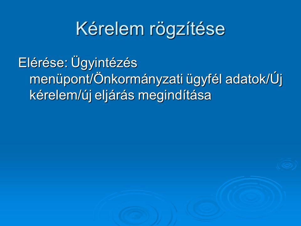 Kérelem rögzítése Elérése: Ügyintézés menüpont/Önkormányzati ügyfél adatok/Új kérelem/új eljárás megindítása