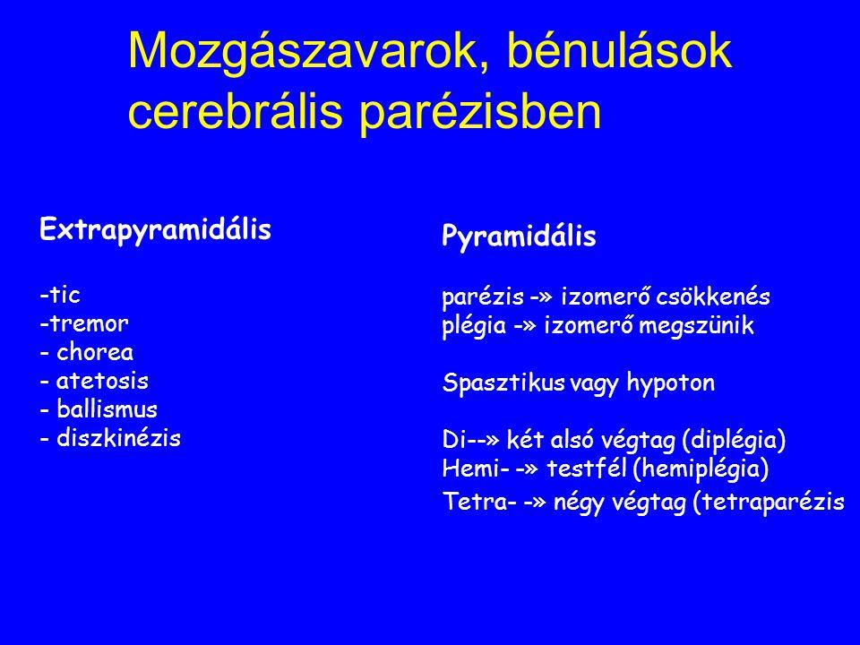 Cerebrális parézis jellemzői Korán felismerhető Stacioner Mozgászavarok, bénulások Értelmi fogyatékosság Epilepszia