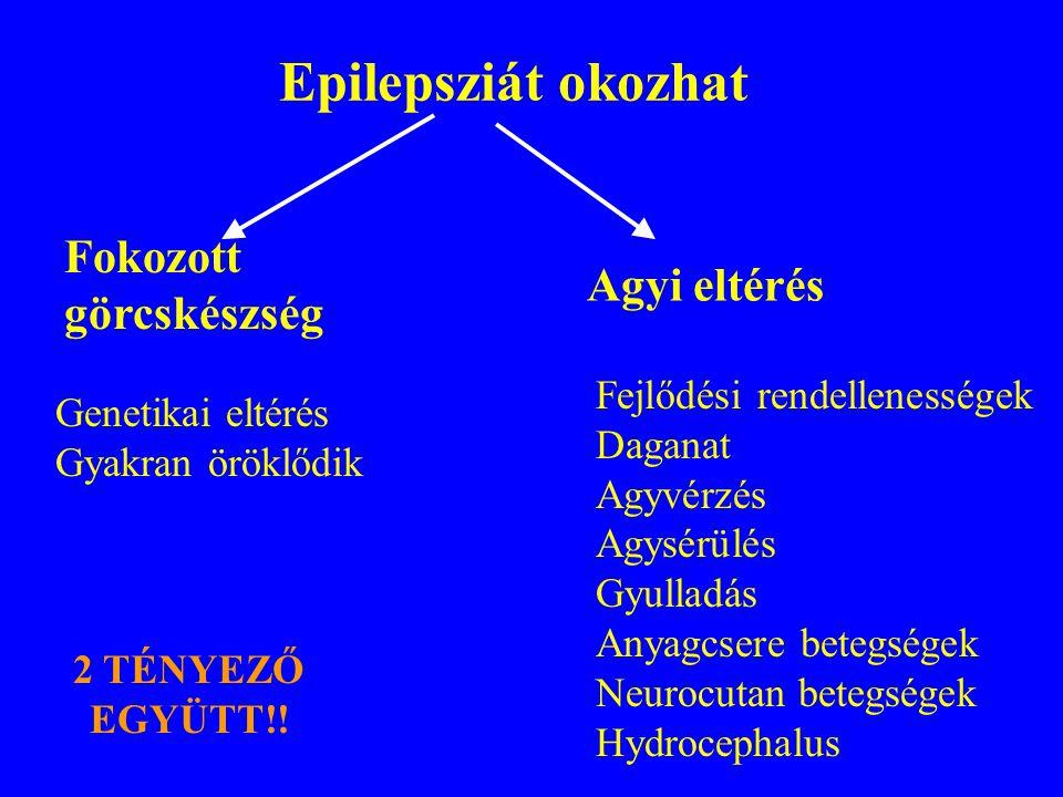 Epilepszia betegség Legalább kettő, egymástól független, nem provokált epilepsziás roham. Nem epilepszia betegség: -Lázgörcs -Alvásmegvonás utáni görc