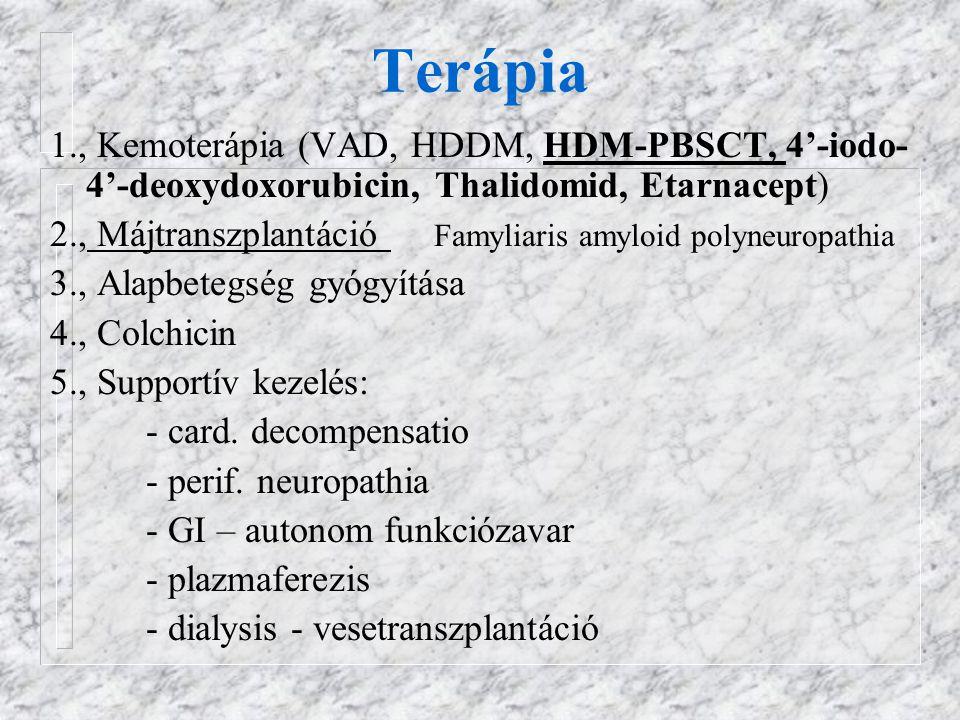 Terápia 1., Kemoterápia (VAD, HDDM, HDM-PBSCT, 4'-iodo- 4'-deoxydoxorubicin, Thalidomid, Etarnacept) 2., Májtranszplantáció Famyliaris amyloid polyneuropathia 3., Alapbetegség gyógyítása 4., Colchicin 5., Supportív kezelés: - card.