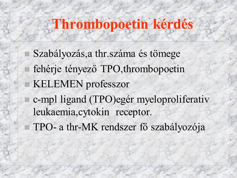 Thrombopoetin kérdés n Szabályozás,a thr.száma és tömege n fehérje tényező TPO,thrombopoetin n KELEMEN professzor n c-mpl ligand (TPO)egér myeloproliferativ leukaemia,cytokin receptor.