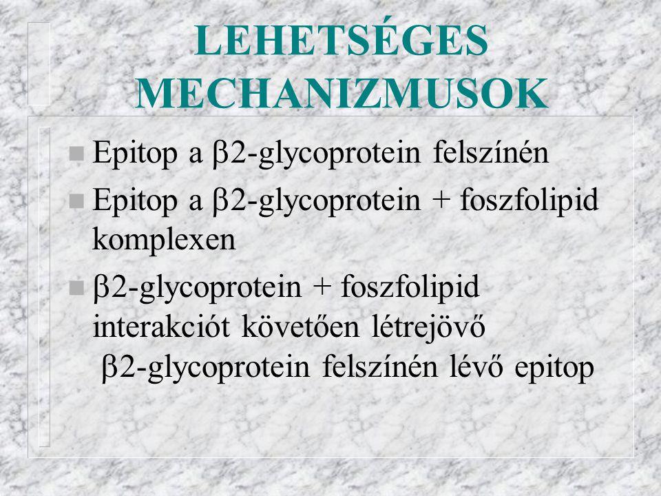 LEHETSÉGES MECHANIZMUSOK n Epitop a  2-glycoprotein felszínén n Epitop a  2-glycoprotein + foszfolipid komplexen n  2-glycoprotein + foszfolipid interakciót követően létrejövő  2-glycoprotein felszínén lévő epitop