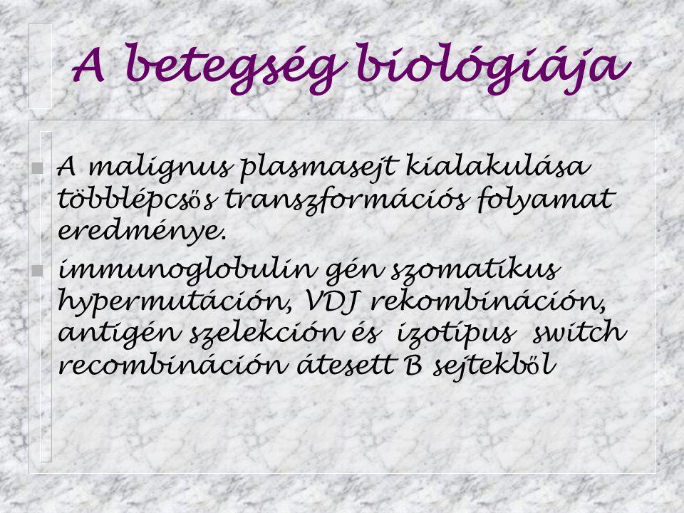 A betegség biológiája n A malignus plasmasejt kialakulása többlépcs ő s transzformációs folyamat eredménye. n immunoglobulin gén szomatikus hypermutác