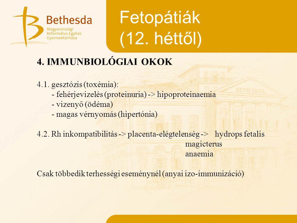 Fetopátiák (12. héttől) 4. IMMUNBIOLÓGIAI OKOK 4.1. gesztózis (toxémia): - fehérjevizelés (proteinuria) -> hipoproteinaemia - vizenyő (ödéma) - magas