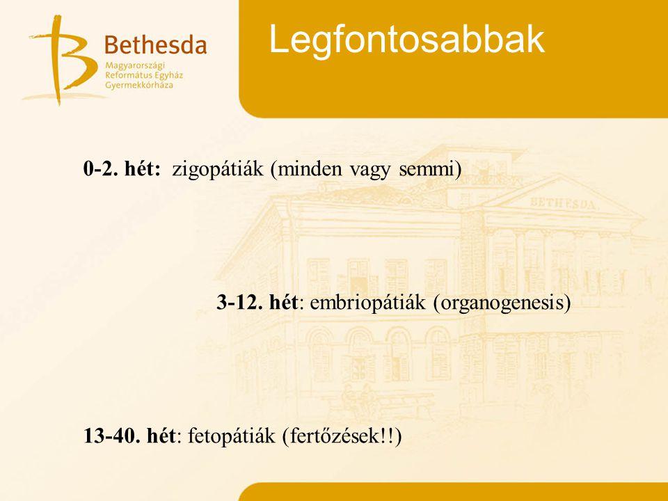 Legfontosabbak 0-2. hét: zigopátiák (minden vagy semmi) 3-12. hét: embriopátiák (organogenesis) 13-40. hét: fetopátiák (fertőzések!!)