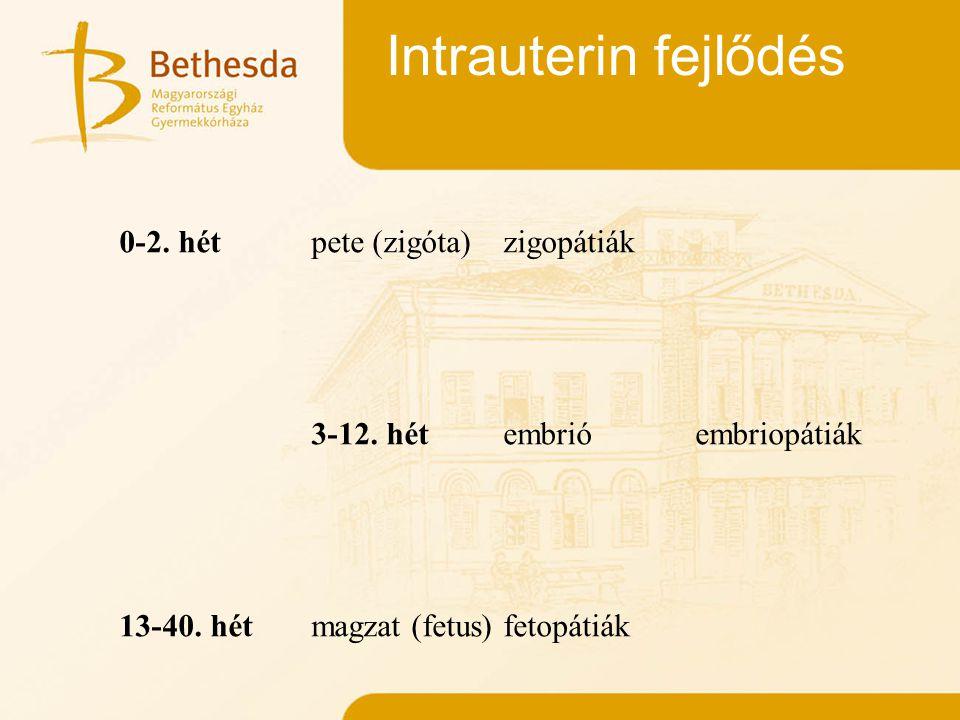 Intrauterin fejlődés 0-2. hétpete (zigóta)zigopátiák 3-12. hétembrióembriopátiák 13-40. hétmagzat (fetus)fetopátiák