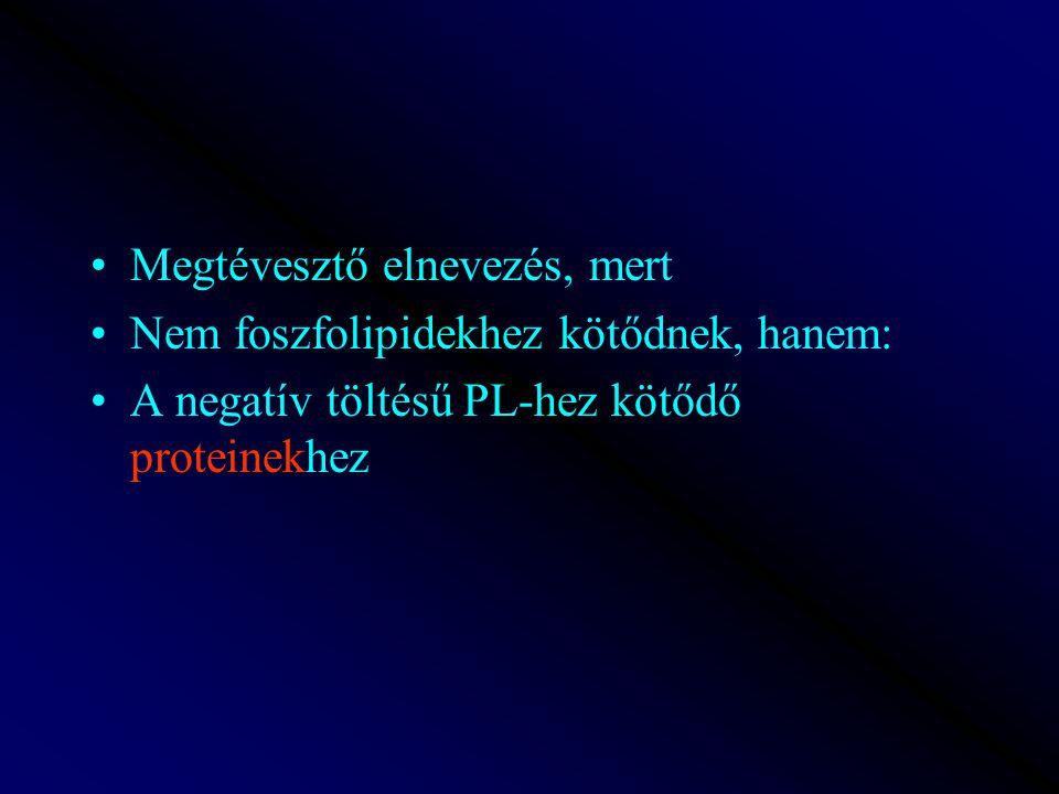 Megtévesztő elnevezés, mert Nem foszfolipidekhez kötődnek, hanem: A negatív töltésű PL-hez kötődő proteinekhez