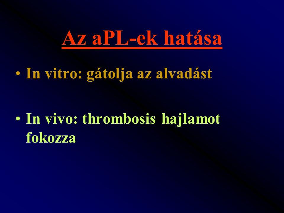 Az aPL-ek hatása In vitro: gátolja az alvadást In vivo: thrombosis hajlamot fokozza