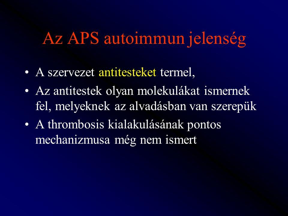 Az APS autoimmun jelenség A szervezet antitesteket termel, Az antitestek olyan molekulákat ismernek fel, melyeknek az alvadásban van szerepük A thromb