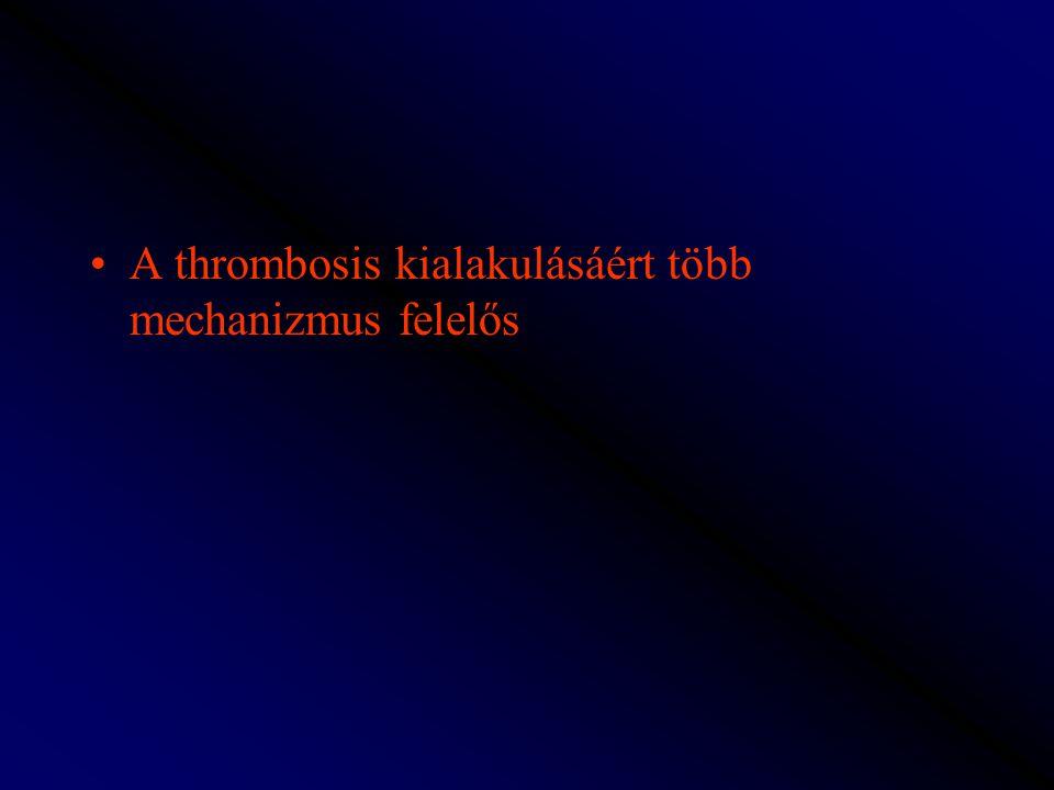 A thrombosis kialakulásáért több mechanizmus felelős