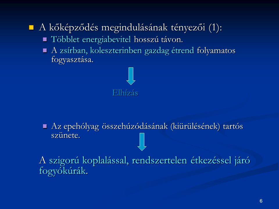 6 A kőképződés megindulásának tényezői (1): A kőképződés megindulásának tényezői (1): Többlet energiabevitel hosszú távon. Többlet energiabevitel hoss